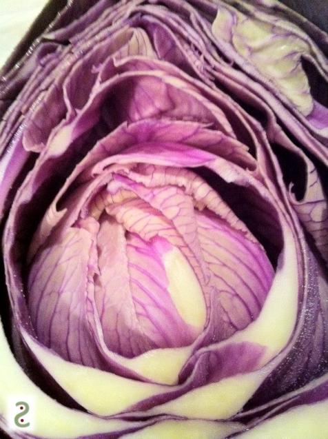 Beau comme chou! On dirait presque une fleur de lotus à l'intérieur