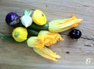 Fleurs de courgette farcies et mini légumes rotis http://wp.me/p389oa-sj