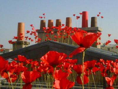 flower by kenzo toit rouge