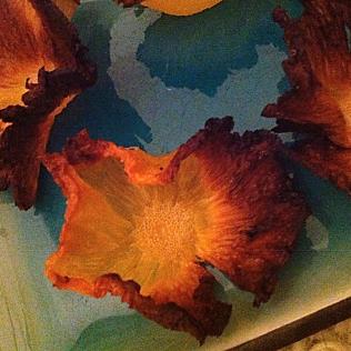 Ananas fleur des îles http://wp.me/p389oa-OM