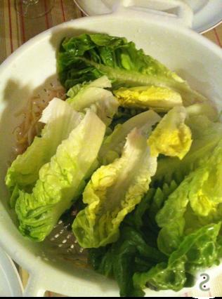Salade, soja, coriandre, que de l'eau...