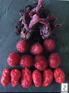 hibiscus3.jpg